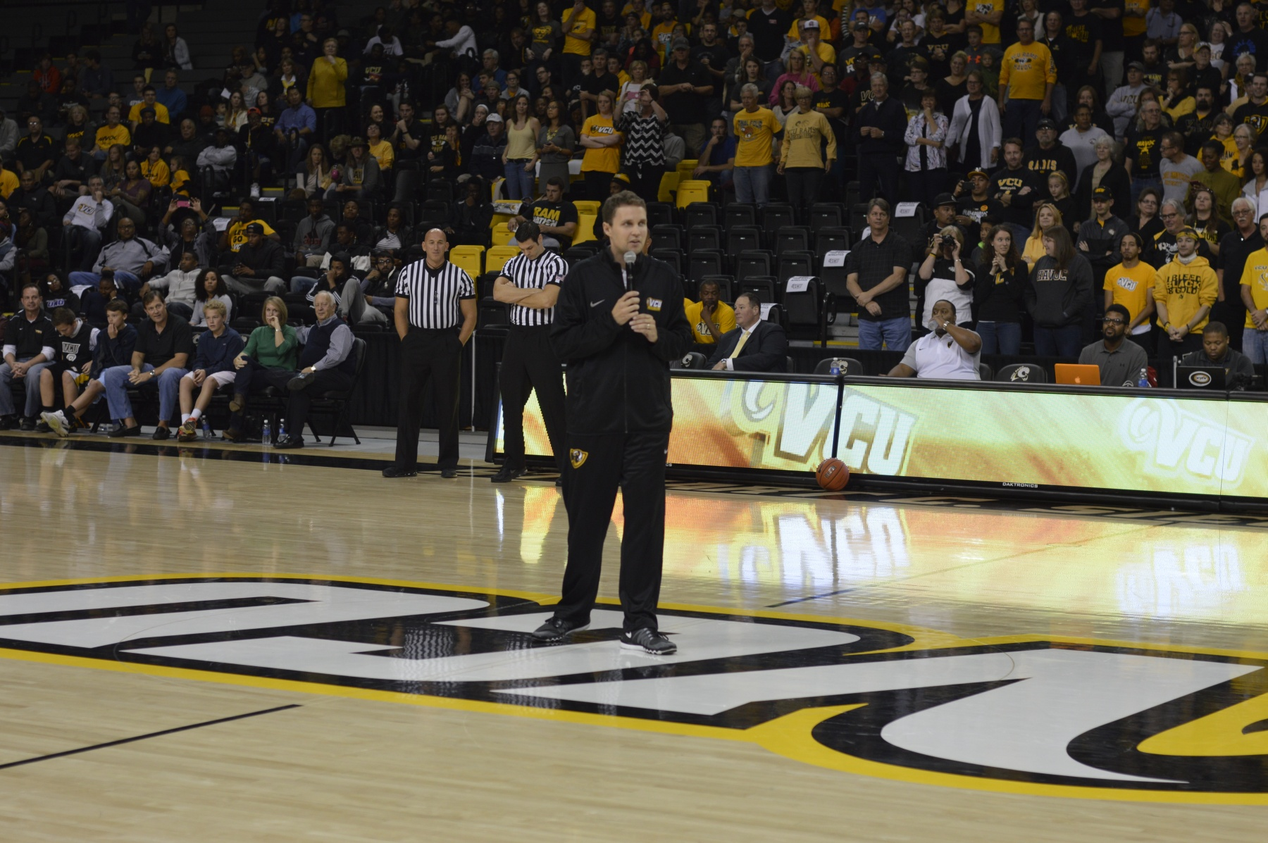 Black and Gold Showcase