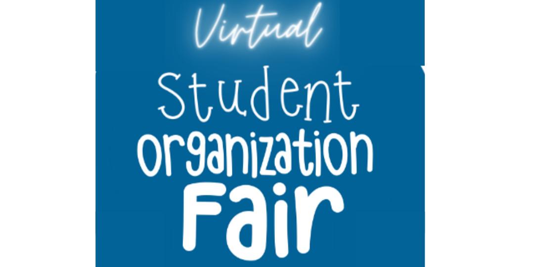 virtual org fair